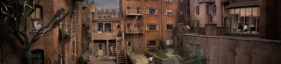 The literary and cinematic techniques in rear window a film by alfred hitchcock