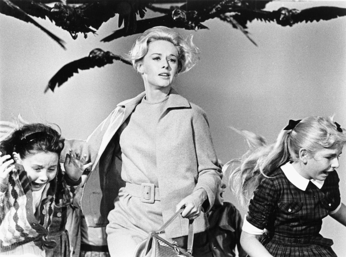 Discuss Hitchcock classics like 'The Birds' in Ball State's MOOC