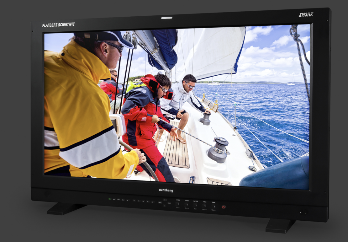With the Release of Its New Monitors, Flanders' DM250 is Met