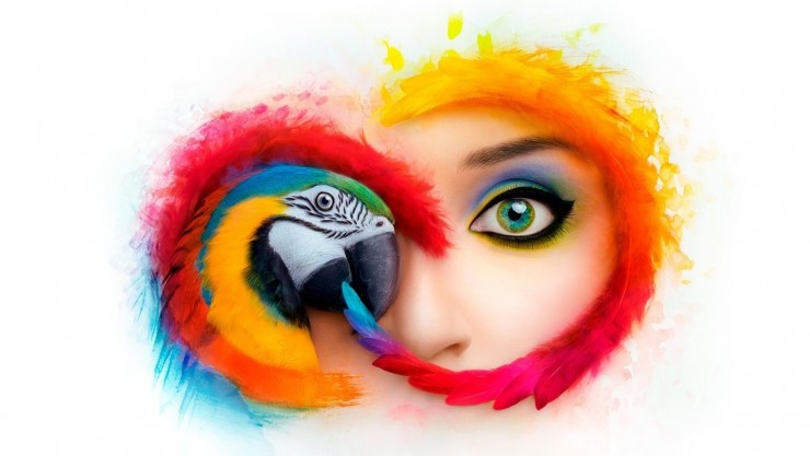 Save 40% on Adobe Creative Cloud Plans (For a Limited Time)