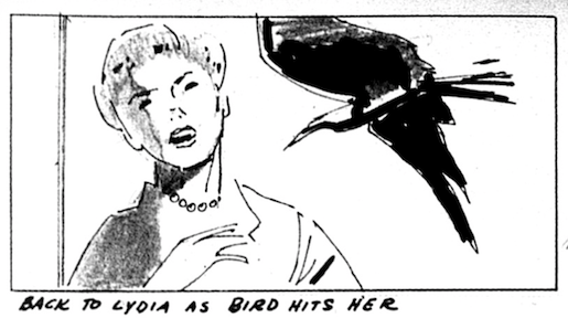 Birds Storyboard Alfred Hitchcock NFS