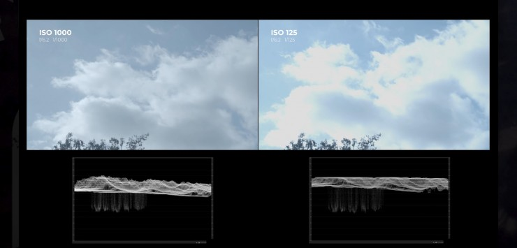 The ISO 1000 Option Retains The Highest Dynamic Range In This Scene
