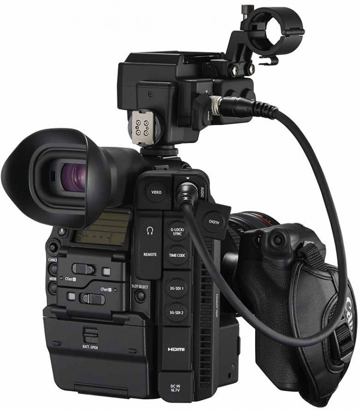 Canon C300 Mark II Back