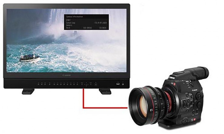Canon reference monitor