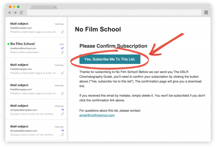 Example of subscription confirmation email