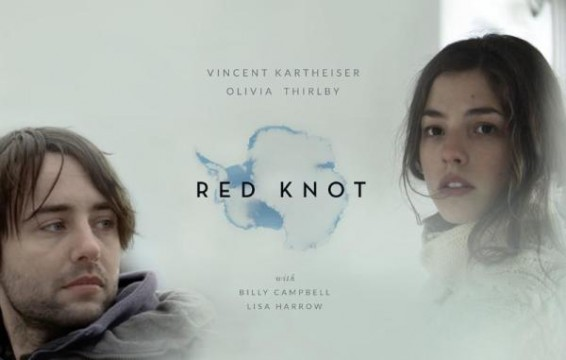 Red Knot poster VOD No Film School