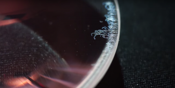 How to Remove Fungus from a Lens (by Mathieu Stern)
