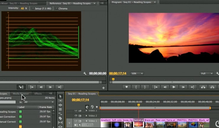 Premiere pro tutorial learn to read scopes with larry jordan color correction can be a real drag especially if a good portion of your shots are improperly exposed or color balanced poorly trying to correct them by fandeluxe Images