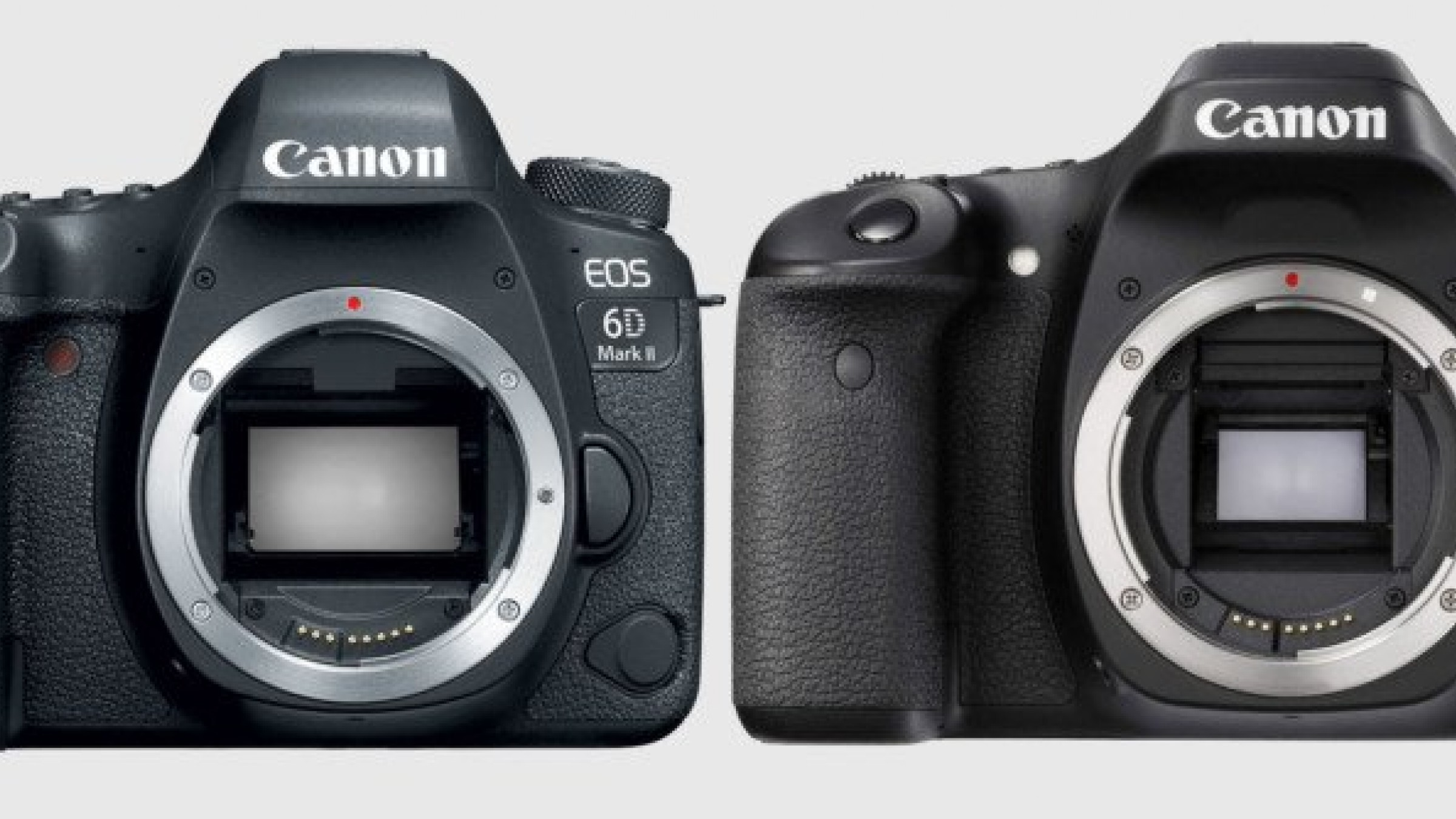 More Bad News for Canon's 6D Mark II