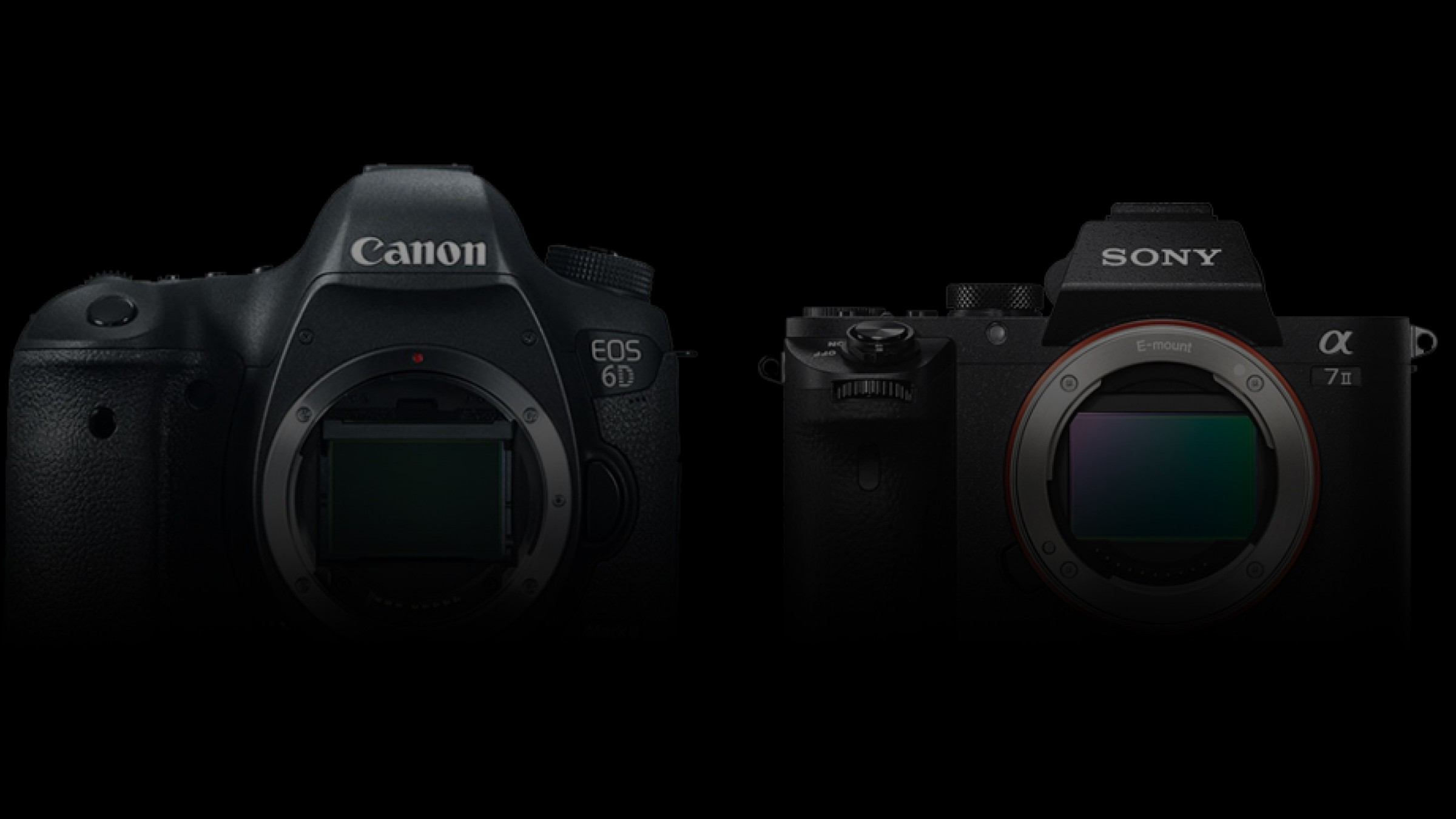 Canon EOS 6D Mark II and Sony a7III: Here's Everything We Know