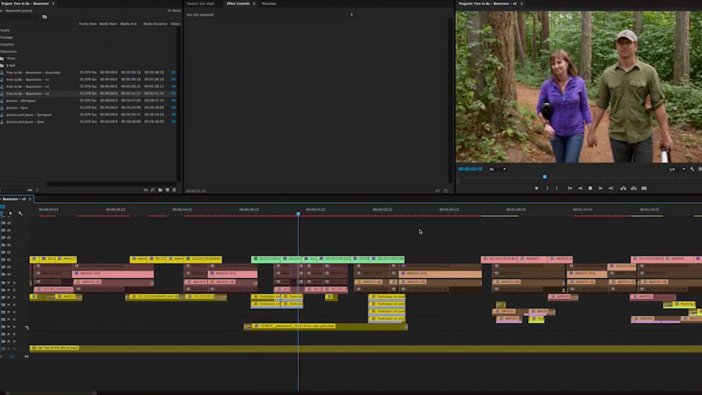How to Cut Short Documentary Films, Part One: Organizing Your Footage Like a Pro