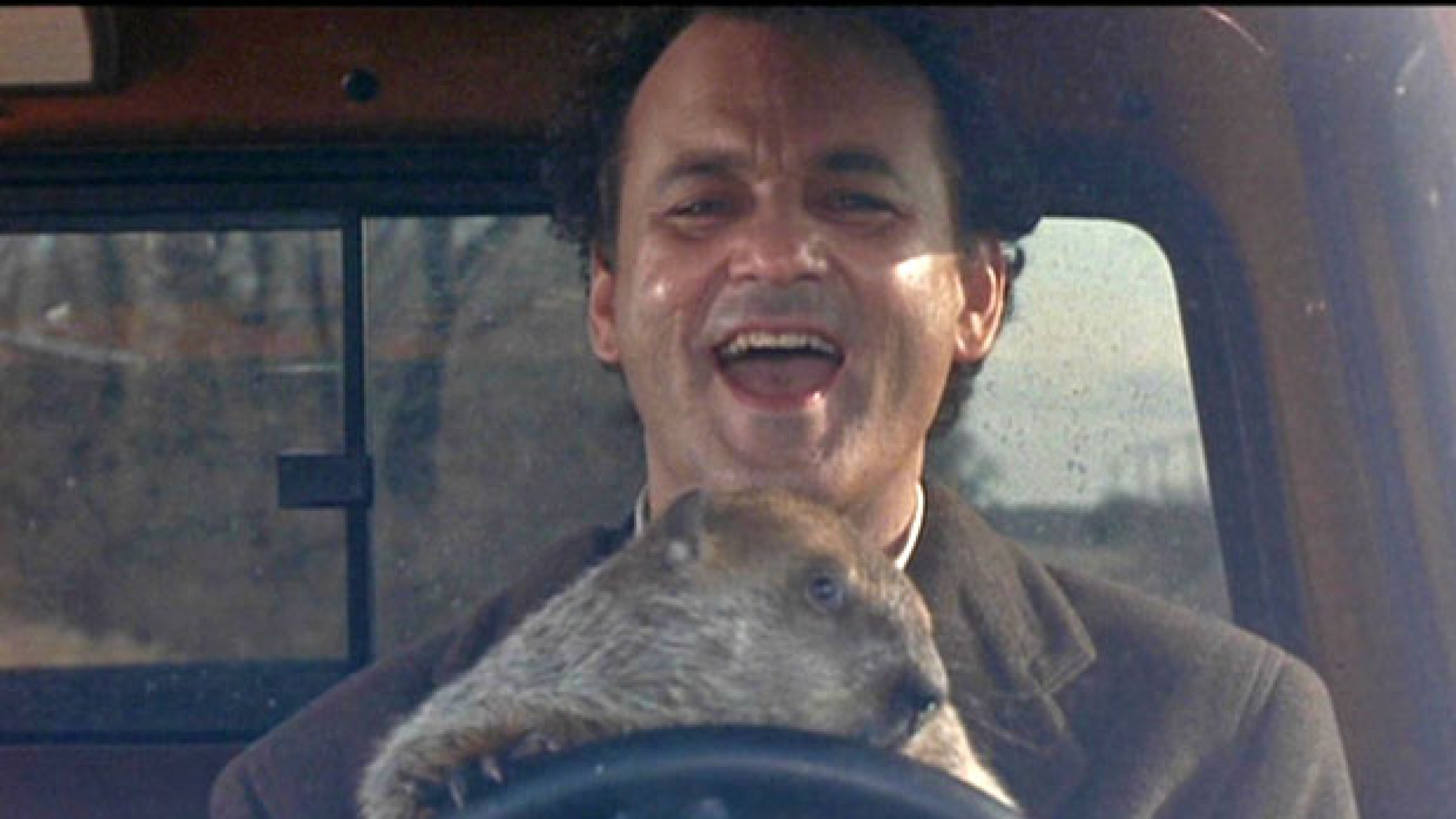'Groundhog Day': How a Script Everybody Loved but Nobody ...