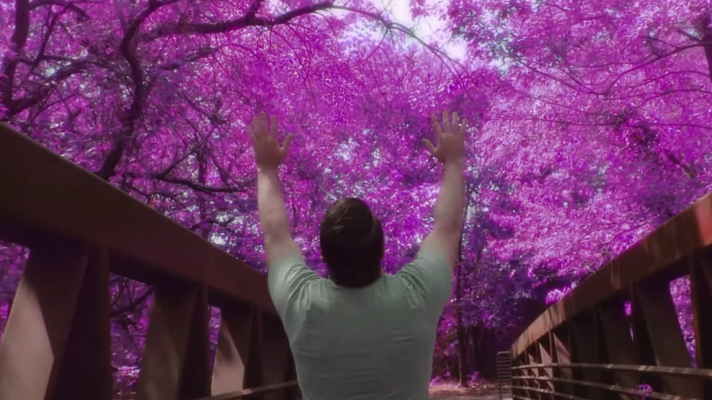 Make Your Footage Trippy & Dreamy by Giving It the Infrared Look in Post