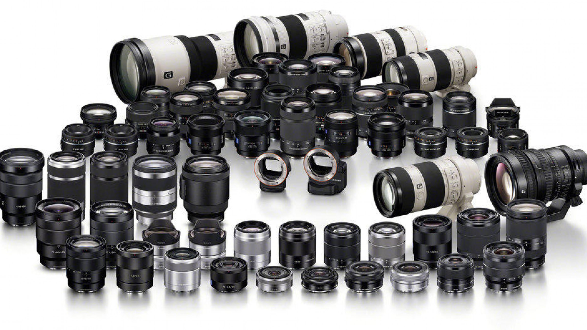 Great for Wildlife Video and Still Shooters: Sony To Add 12 New E-Mount Lenses & Animal Eye AF to Alpha Universe