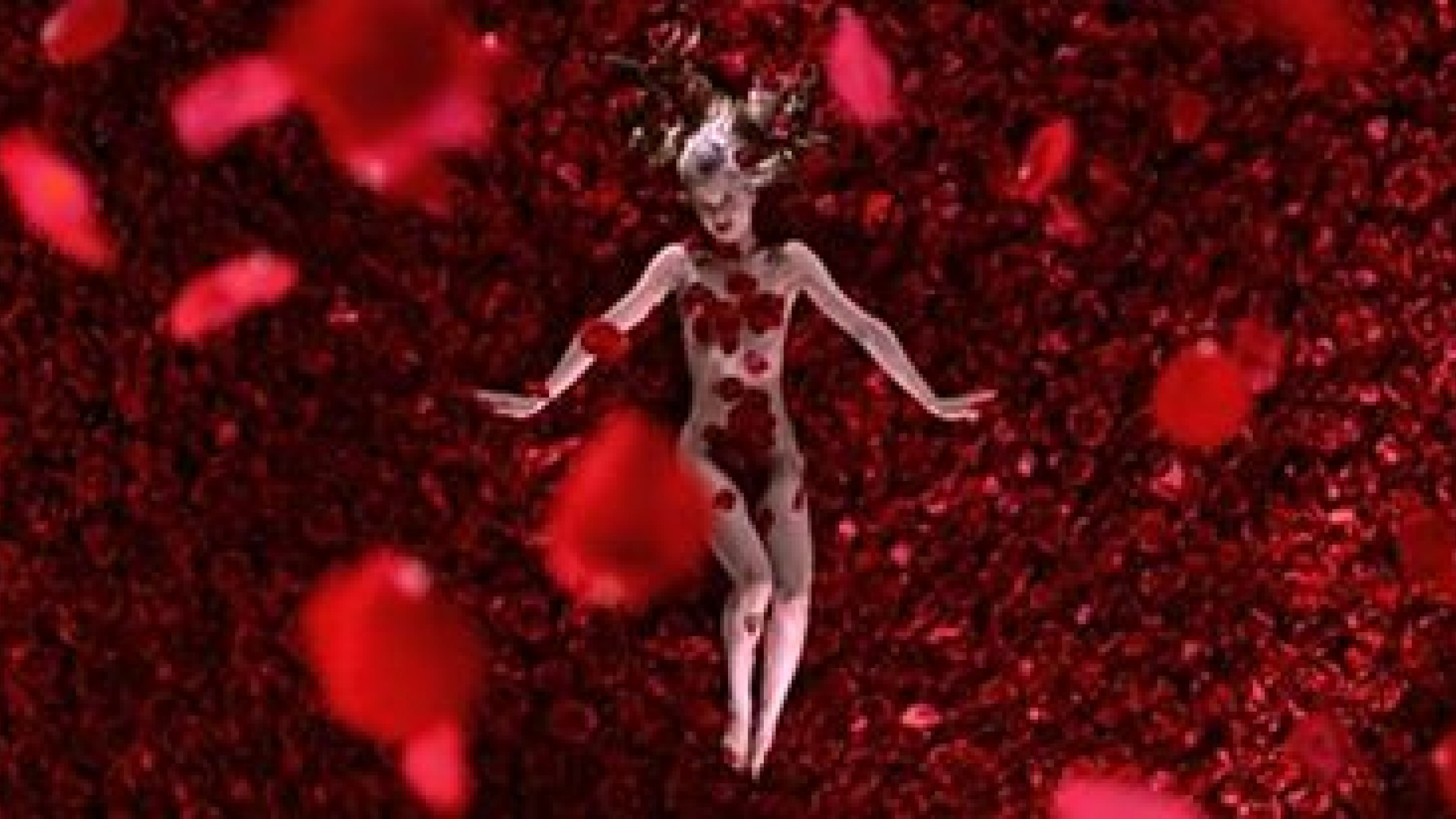 the american dreams deprivation of finding true happiness in american beauty a movie by sam mendes American beauty a sociological movie review american beauty and directed by sam mendes in 1999 is a unique piece that search for happiness.