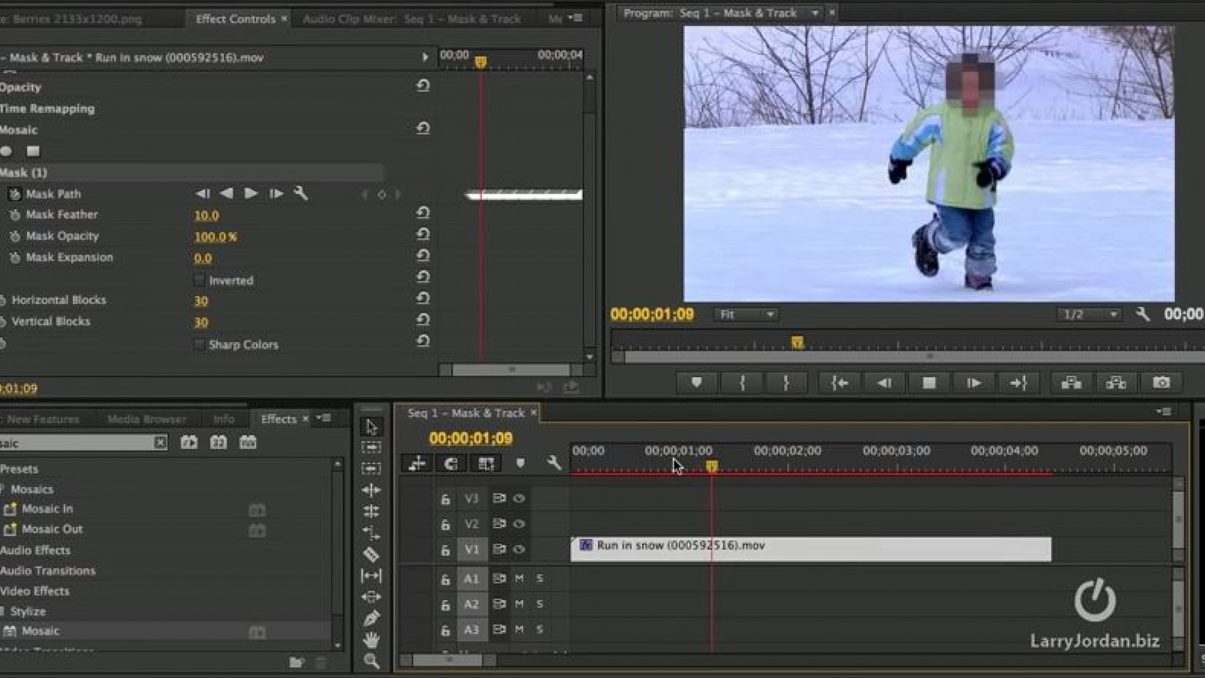 Masking & Tracking in Premiere Pro Is Really Easy: Here\'s Larry ...