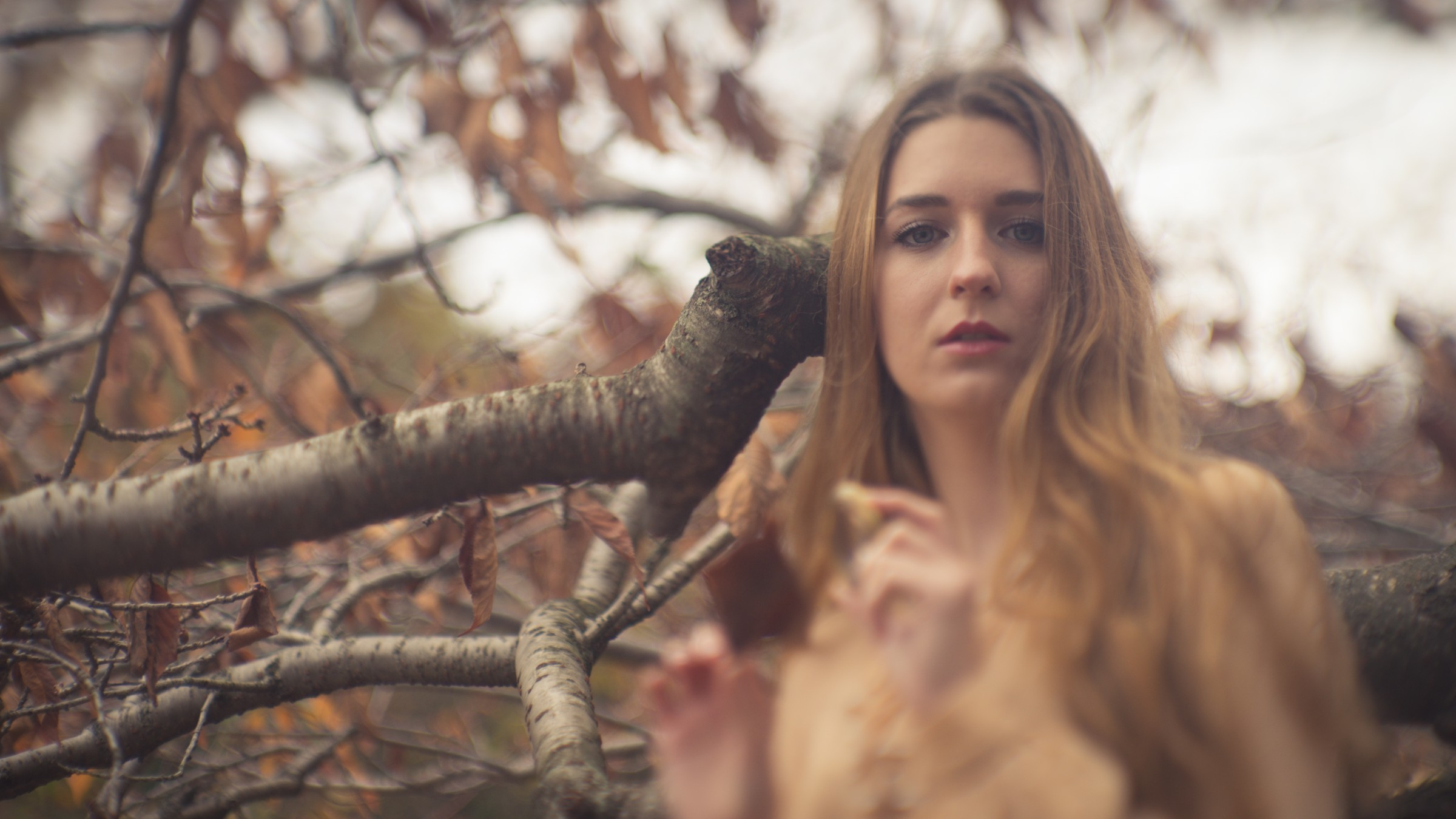 Using a Vintage Soviet Lens with a Tilt Shift Adapter for Breathtaking Bokeh