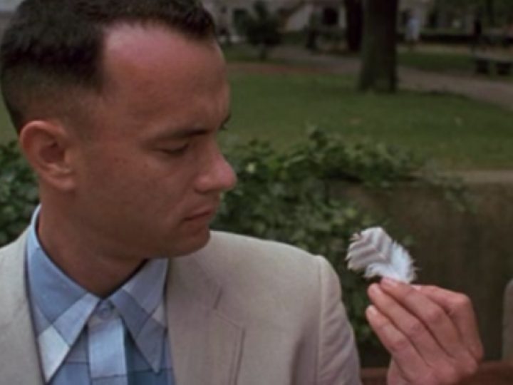What Does The Feather Mean In Forrest Gump