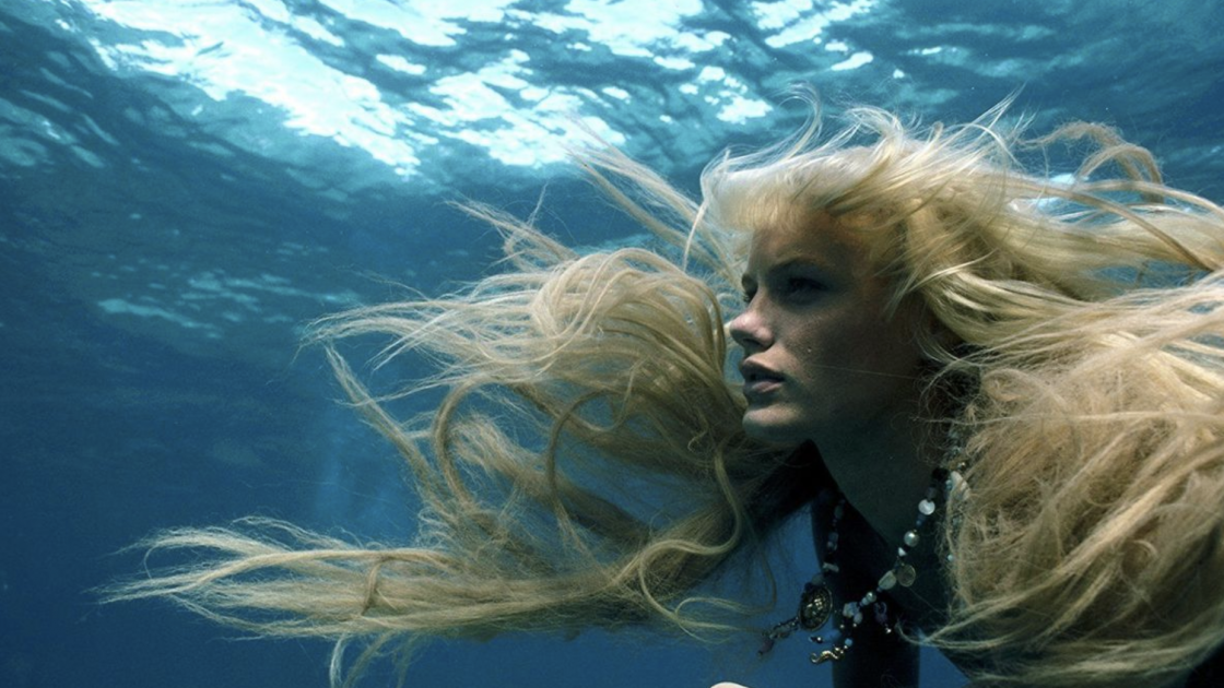 Tips to Help You Take the Plunge into Underwater Videography