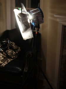 Rim light — Arri 650 watt light with 250 diffusion, positioned behind our actress, camera-left