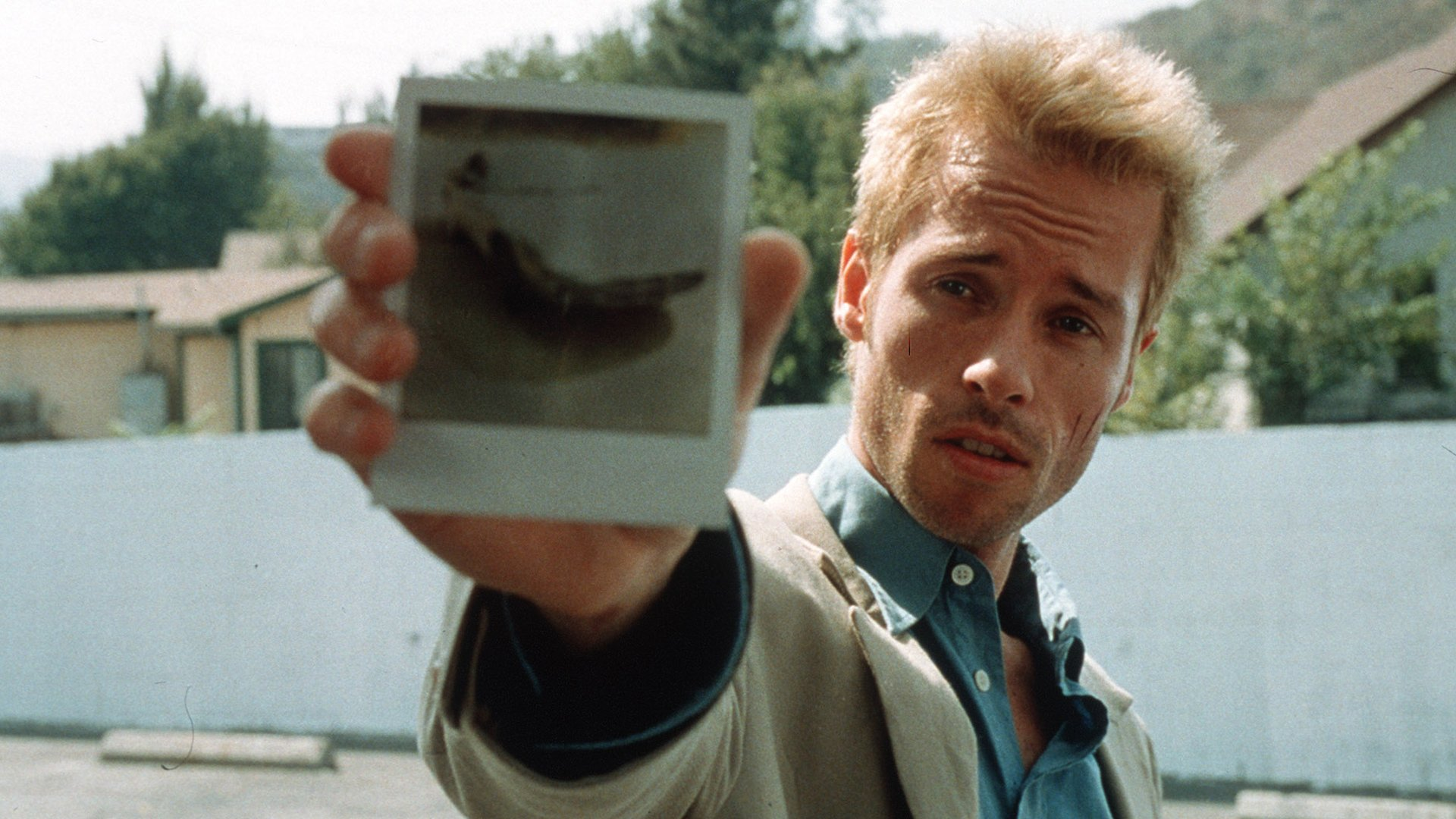 christopher nolan s memento was a sleeper smash hit in 2000 the smart    Memento Polaroid