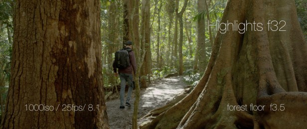 Mark Toia RED DRAGON Still Frame 3