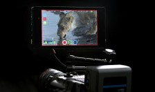 Atomos Shogun NAB 2014 (Embargo 9am PDT 7th April 2014)